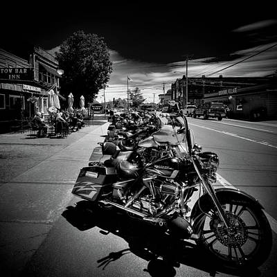 Photograph - Hogs In Old Forge by David Patterson