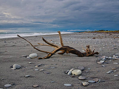 Photograph - Hokitika Beach - Driftwood - New Zealand by Steven Ralser