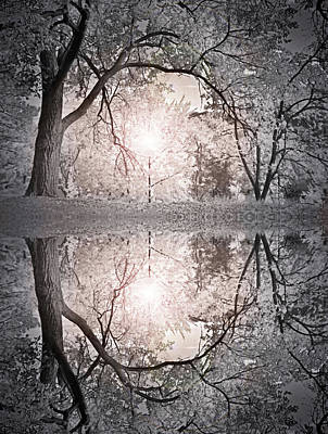 Photograph - Hold Me In This Pale Light by Tara Turner