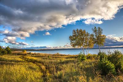 Wall Art - Photograph - Birch Trees And Path Lake Michigan Petoskey by J Thomas