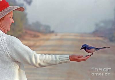 Photograph - Holding A Florida Scrub Jay by D Hackett