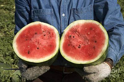 Holding A Halved Watermelon Art Print