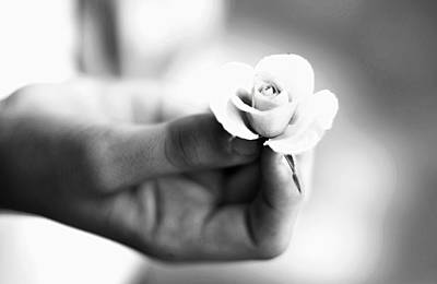 Photograph - Holding Small Flower by Serena King