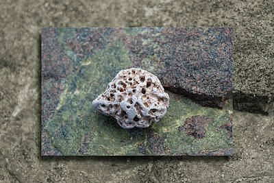 Photograph - Holey Stone 2 by WB Johnston