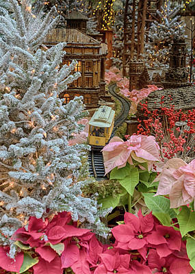 Photograph - Holiday Aglow by Susan Rissi Tregoning
