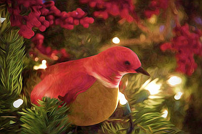 Photograph - Holiday Chirp by Julius Reque