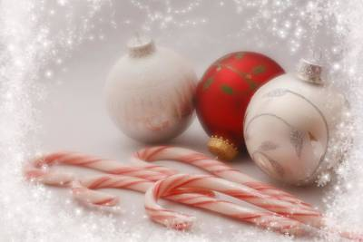 Photograph - Holiday Dreams 2 by Diane Alexander