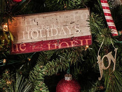 Photograph - Holiday Joy by Stewart Helberg