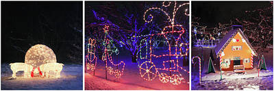 Photograph - Holiday Light Triptych At Lilacia Park by Joni Eskridge