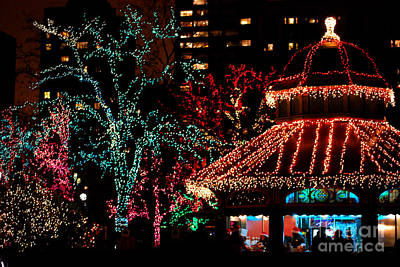 Holiday Lights At Lincoln Park Zoo Original by Nancy Mueller