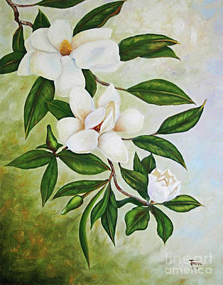 Holiday Magnolias Art Print