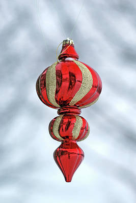Photograph - Holiday Ornament by Nikolyn McDonald