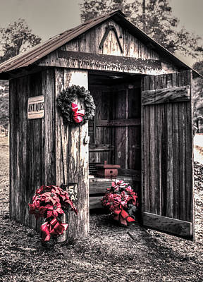 Photograph - Holiday Outhouse  by Debra Forand