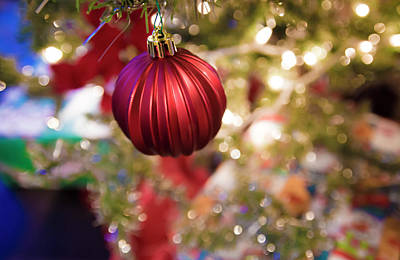 Photograph - Holiday Spirit 2 by Tracy Winter