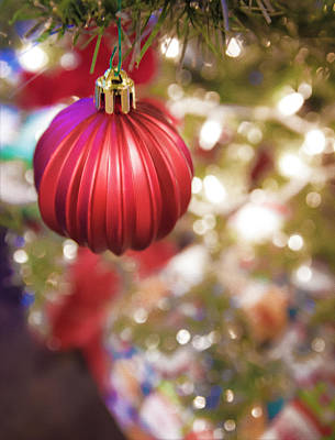 Photograph - Holiday Spirit 3 by Tracy Winter
