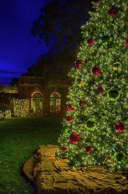 Photograph - Holidays At Filoli by Patricia Dennis