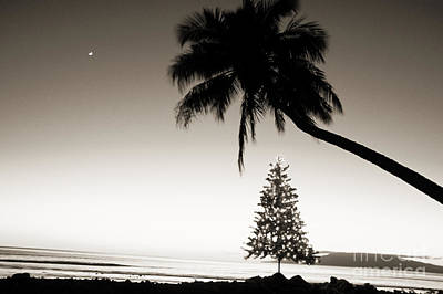 Hawaii Photograph - Holidays In Hawaii by Ron Dahlquist - Printscapes