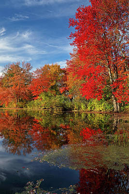 Photograph - Holliston Massachusetts by Juergen Roth