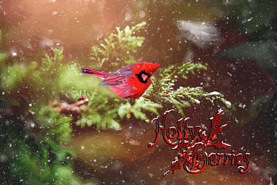 Mixed Media - Holly Berrries by Mary Timman