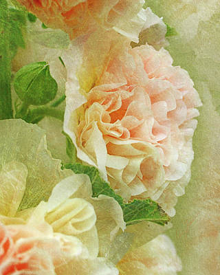 Photograph - Hollyhock by Ann Lauwers