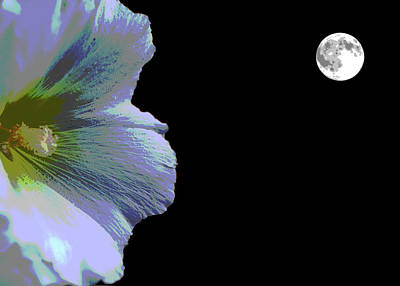 Digital Art - Hollyhock Moonlight by Aliceann Carlton