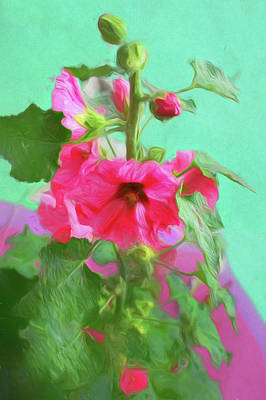 Photograph - Hollyhocks - 2  by Nikolyn McDonald
