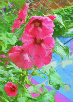 Photograph - Hollyhocks - 3 by Nikolyn McDonald