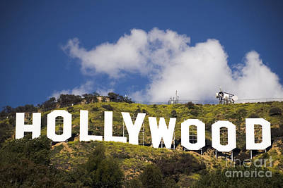 Hollywood Sign Art Print by Anthony Citro