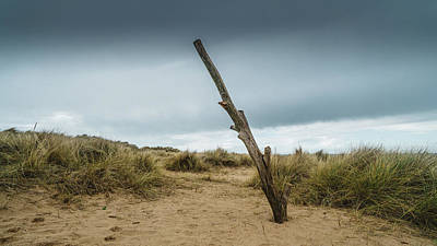 Photograph - Holme Dunes Beach by James Billings