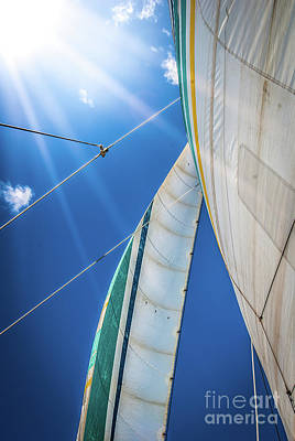 Photograph - Holo Holo Catamaran Sail Side 2 by Blake Webster
