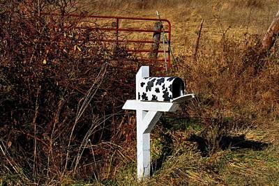 Photograph - Holstein Mailbox by Kathryn Meyer