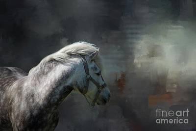 Photograph - Holsteiner by Eva Lechner