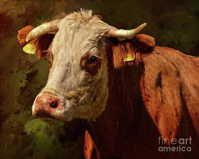 Painting - Holy Cow by Tara Richardson