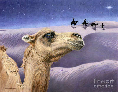 Camel Drawing - Holy Night by Sarah Batalka