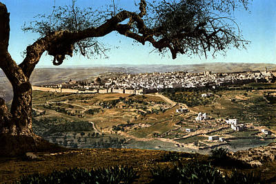 Photograph - Holyland - Mount Scopus Jerusalem by Munir Alawi