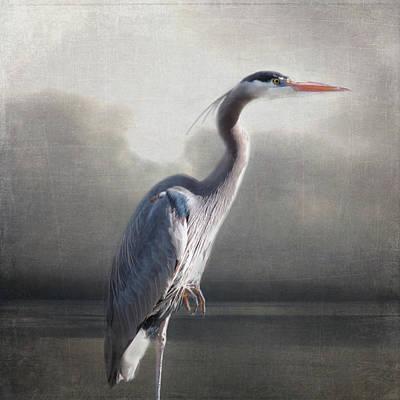 Photograph - Homage To Audubon by Sally Banfill