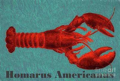 North Sea Mixed Media - Homarus Americanus by Susan Lafleur