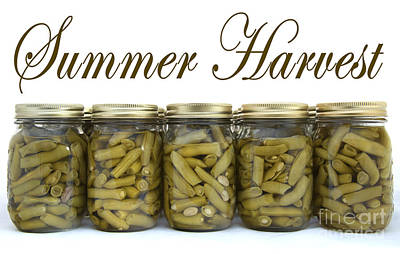 Photograph - Home Canned Green Beans Summer Harvest by Schwartz Nature Images