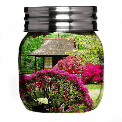 Mixed Media - Home Flower Garden In A Glass Jar Art by Marvin Blaine