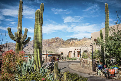 Photograph - Home In The Southwest by David Levin