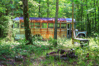 Photograph - Home In The Woods by Newman Artography