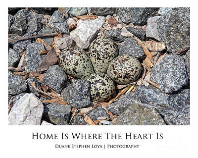 Home Is Where The Heart Is Original by Duane Loya