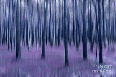 Abstract Landscape Photograph - Home Of The Seven Dwarfs by Steffi Louis