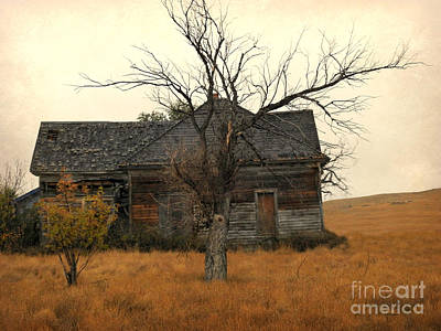 Photograph - Home On The Range by Kathy M Krause