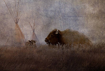 Home On The Range Art Print by Ron Jones