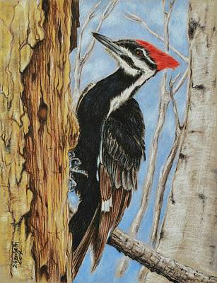 Woodpecker Mixed Media - Home Sweet Home by Elizabeth Cox