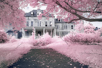 Photograph - Home Sweet Pinky Home by Brian Hale