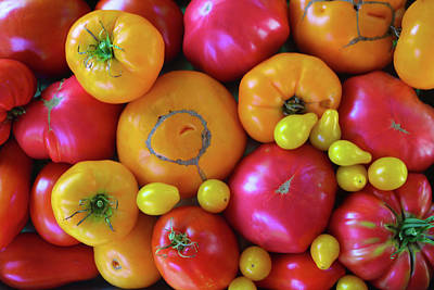 Photograph - Homegrown Heirloom Tomatoes by Polly Castor