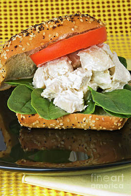 Photograph - Homemade Chicken Salad Sandwich by Vizual Studio