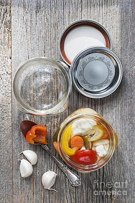 Pickled Photograph - Homemade Preserved Vegetables by Elena Elisseeva